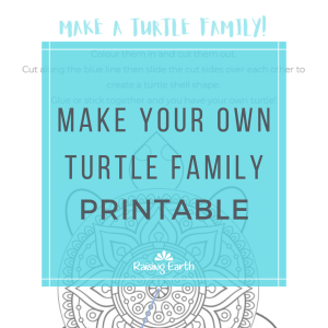 Make Your Own Turtle Family