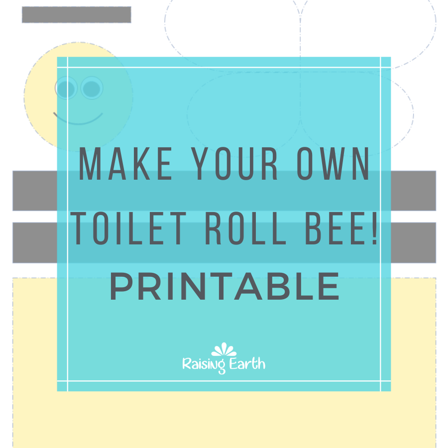 Make Your Own TR Bee